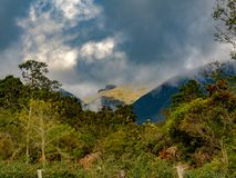 An overcasted landscape of the Andean mountains. Of central Colombia illuminated by the sunset light royalty free stock images