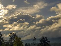 Overcasted sky at sunset above the Andean mountains. Of central Colombia and some eucalyptus trees stock photo