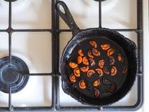 Overcooked cebula w niecce Zła kuchnia Pojęcie szkodliwy jedzenie i carcinogens zdjęcie royalty free