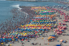 Overcrowded Beach Royalty Free Stock Image