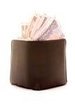 overfilled portfel. Obrazy Royalty Free