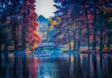 overfiltered artistic autumn mist with trees on water`s edge stock photo