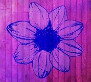 Overfiltered floral concept painted on wood wall Stock Photos