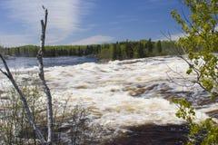 Overflow del fiume dalla fusione di primavera immagini stock libere da diritti
