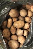 Overflowing bag of potatos Royalty Free Stock Photos