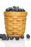 Overflowing Basket of Blueberries Royalty Free Stock Photos