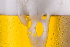 Overflowing beer. A beer glass with overflowing beer froth an dew drops. ideal for websites and magazines layouts Stock Images