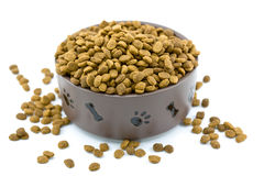 Overflowing Dog Food Bowl Stock Images