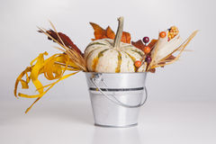 Overflowing Fall Bucket Royalty Free Stock Image