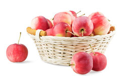 Overfull basket with mini apples. On white background stock photography