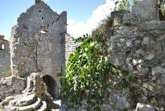 Overgrowing fördärvar av gammal slott fotografering för bildbyråer
