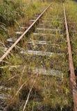 Overgrown железнодорожный путь Стоковые Фотографии RF