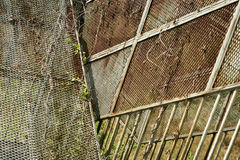 Overgrown ржавая старая предпосылка проволочной изгороди Стоковая Фотография