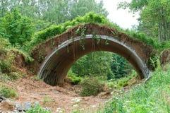 Overgrown сарай в древесинах, старый ангар для самолетов, воинский ангар в лесе стоковое изображение