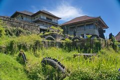 Overgrown abandoned hotel. Abandoned hotel with stone sculptures in the bush Royalty Free Stock Images