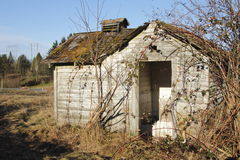 An Overgrown Abandoned Shack Royalty Free Stock Photo