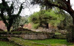 Overgrown ancient ruins in Olympia Greece with moss covered rocks and ivy covered trees Stock Photo