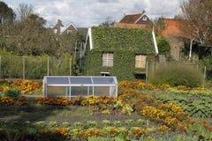Overgrown barn Stock Photo