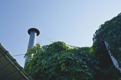 The overgrown building roof top stock photography