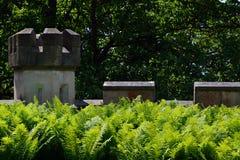 Overgrown castle walls Stock Photo