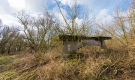 Overgrown concrete bridge pier in a natural landscape. Old concrete bridge pier in a natural area overgrown with plants and shrubs Royalty Free Stock Photos