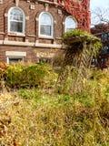 Overgrown Fall Garden Stock Photos
