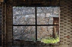 Overgrown garden abandoned interior Stock Image