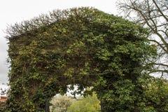 Overgrown gate Stock Photos