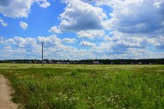 Overgrown with grass and wild flowers meadow against the sky with clouds Stock Images