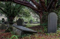 Overgrown grave yard. An overgrown historic grave yard in North Wales with some slate head stones stock image