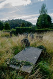Overgrown Graveyard in Ireland Stock Photography