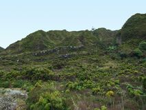 Overgrown hills Stock Photography