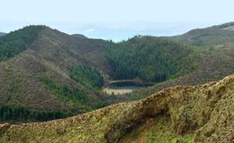 Overgrown hills at the Azores Royalty Free Stock Images