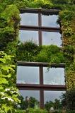 Overgrown House Facade Stock Photo