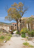 Overgrown houses on Spinalonga. Stock Photo