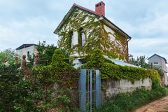 Overgrown In Green Ivy Decorative Plant Countryside White House Royalty Free Stock Images