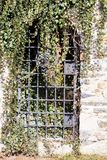 Overgrown with ivy barred entrance of Jihlava ramparts of the 17th century Royalty Free Stock Photography