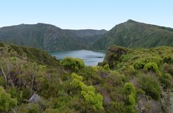 Overgrown lakeside scenery at the Azores Stock Images