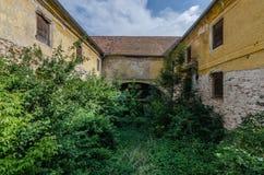 overgrown mill Royalty Free Stock Photos