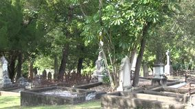 Overgrown old cemetery. This cemetery was the first official cemetery in the city of Brisbane Australia, with the first grave dating to 1871.  The cemetery is stock video