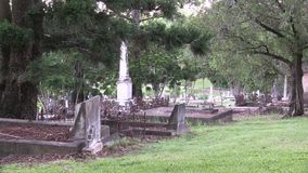Overgrown old cemetery, zoom out, with bird sounds. This cemetery was the first official cemetery in the city of Brisbane Australia, with the first grave dating stock video footage