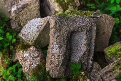 Overgrown old dry stone wall with moss and lichen.  Royalty Free Stock Photography