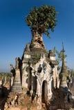 Overgrown pagoda ruins of Indein. Burma, Myanmar (also called Indiana Jones temples of Doom Royalty Free Stock Photos