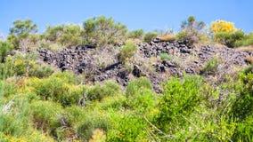 Overgrown petrified lava flow on volcano Etna Stock Image