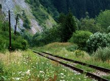Overgrown railway track. Scenic view of overgrown railway track in countryside with mountain in background Stock Photos
