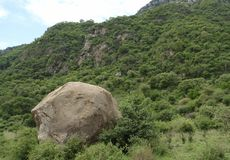 Overgrown Rift Valley scenery Royalty Free Stock Images