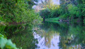 Overgrown river. Area photos mysterious abandoned river Royalty Free Stock Photography