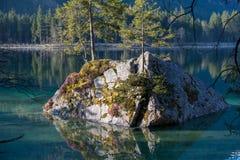 Overgrown rock in tarn in the German alps royalty free stock photos