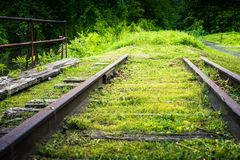 Grassy end of the road on the tracks. royalty free stock photography