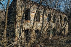 Overgrown ruined abandoned building in dirty swamp.  royalty free stock photo